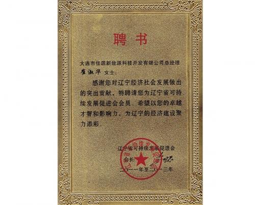 辽宁省可持续发展促进会聘书